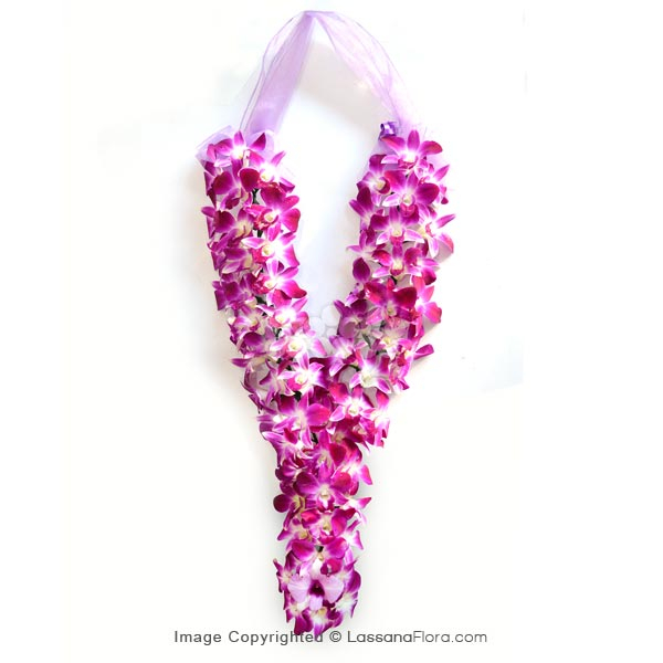 VIP GARLAND - 2 FT - Corporate Gifting - in Sri Lanka