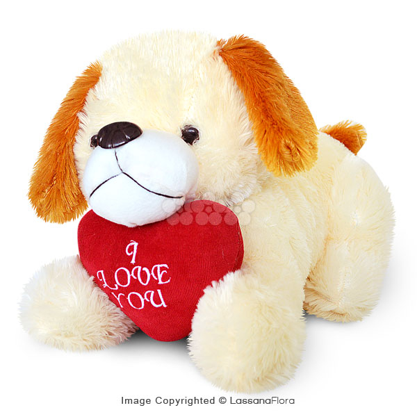 LOVE DOGGY (LARGE) - Soft Toys - in Sri Lanka