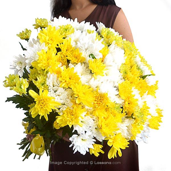 Yellowish - Thank You - in Sri Lanka
