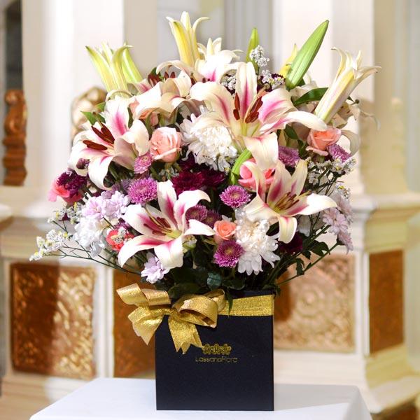 LILY HEAVEN - Lovely Lilies - in Sri Lanka