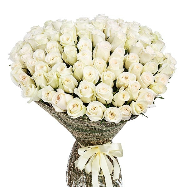 BUNCH OF 100 WHITE ROSES - Love & Romance - in Sri Lanka