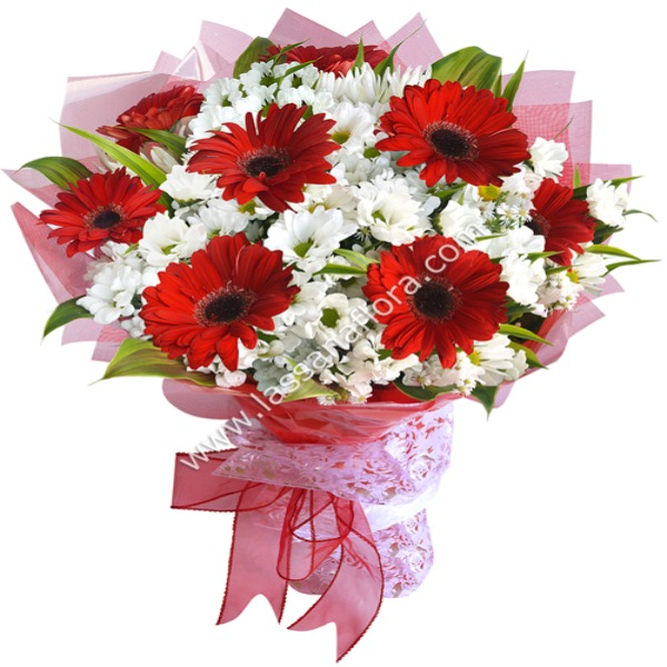 RED RADIANCE HAND-TIED - Anniversary - in Sri Lanka