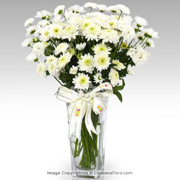 ARCTIC QUEEN CHRYSANTHEMUMS (Without Vase0 - Get Well soon - in Sri Lanka