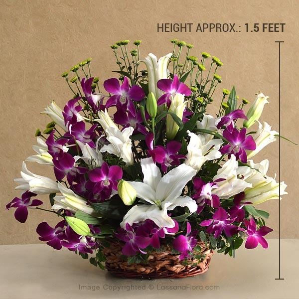 ULTIMATE ELEGANCE - Lovely Lilies - in Sri Lanka