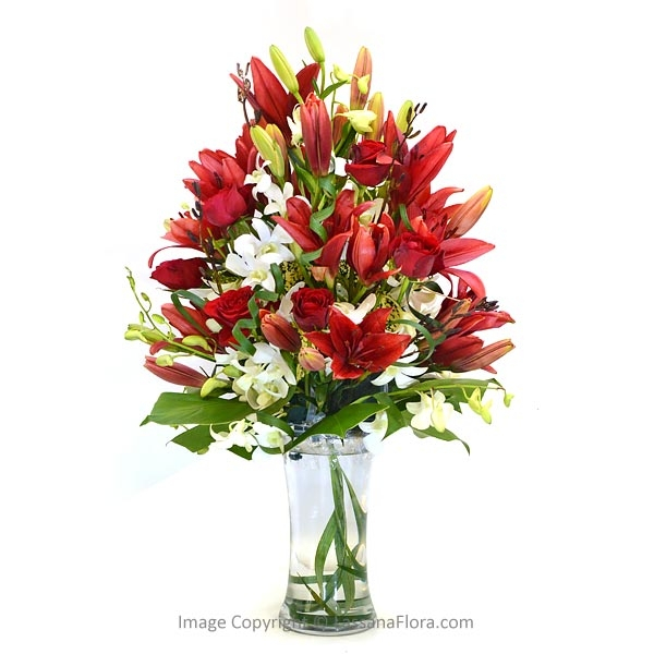 COLORFUL CELEBRITY - Weekly Flowers - in Sri Lanka