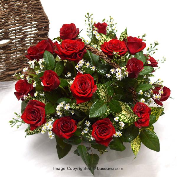 ROSE GARDEN - Love & Romance - in Sri Lanka