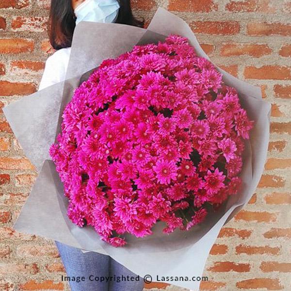 DREAMY PURPLE CHRYSANTHEMUM BUNCH - Exotic Chrysanthemums - in Sri Lanka