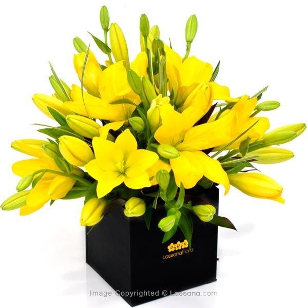 Eternal Friendship ( Yellow Lilies ) - Lovely Lilies - in Sri Lanka