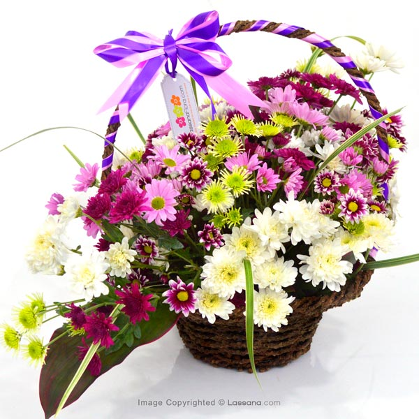 LOVELY PURPLE BASKET - Exotic Chrysanthemums - in Sri Lanka