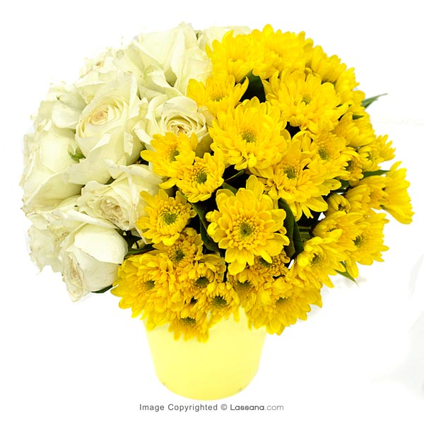 Yellow Hello ( White Roses With Chrysanthemums) - Thank You - in Sri Lanka