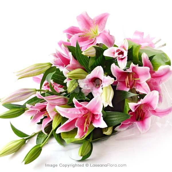 SHEAF OF PINK LILIES - 5 STEMS - Lovely Lilies - in Sri Lanka