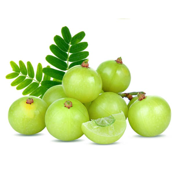 NELLI  (නෙල්ලී) - 100g - Vegetables & Fruits - in Sri Lanka