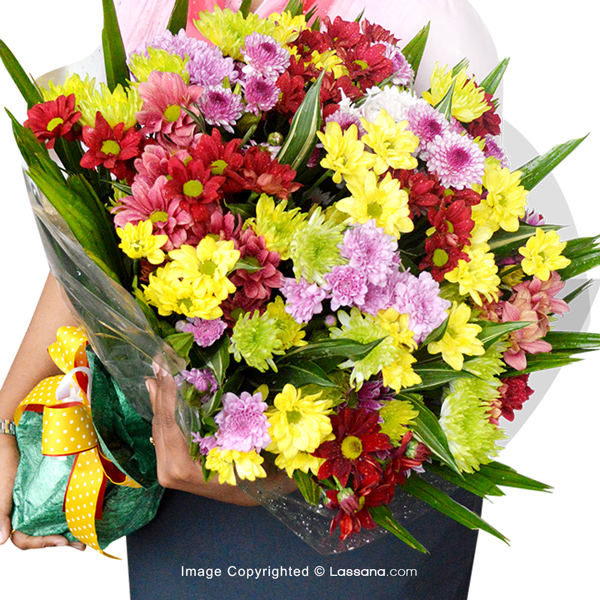 COLOURFUL CHRYSANTHEMUM BOUQUET - Exotic Chrysanthemums - in Sri Lanka